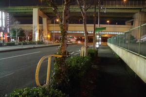 夜のフェリーターミナル駅前バス停